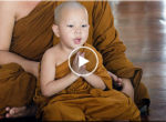 Sleeping little monk